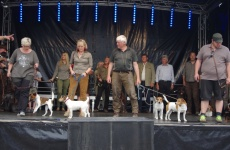 2016-Bürgerfest-So-023